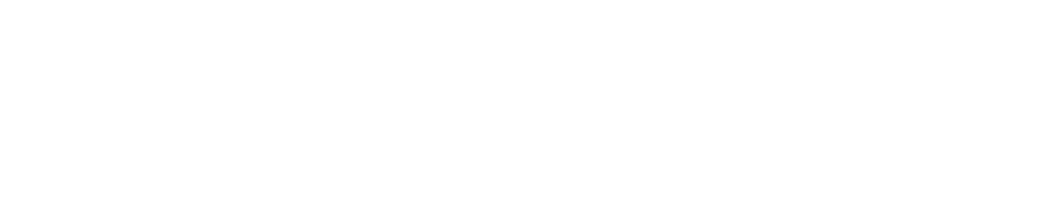 Feyen Zylstra_logo lockup_4x-min