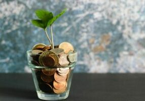 plant in a glass pot full of coins